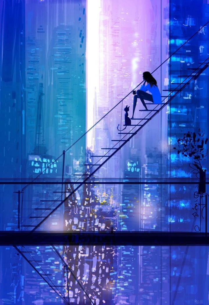 pascal campion: The view.
