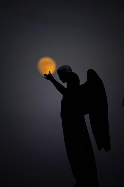 Image:  Mount Olivet Cemetery - Nashville, TN.